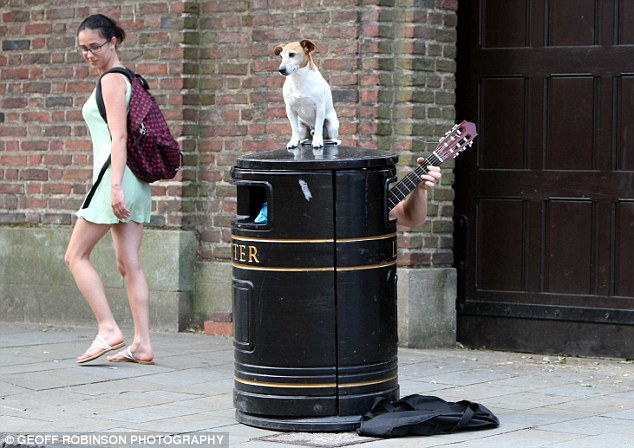 Busker Bin