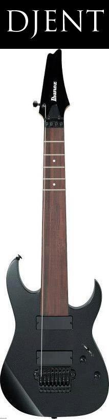 Ibanez Djent Special Custom Guitar