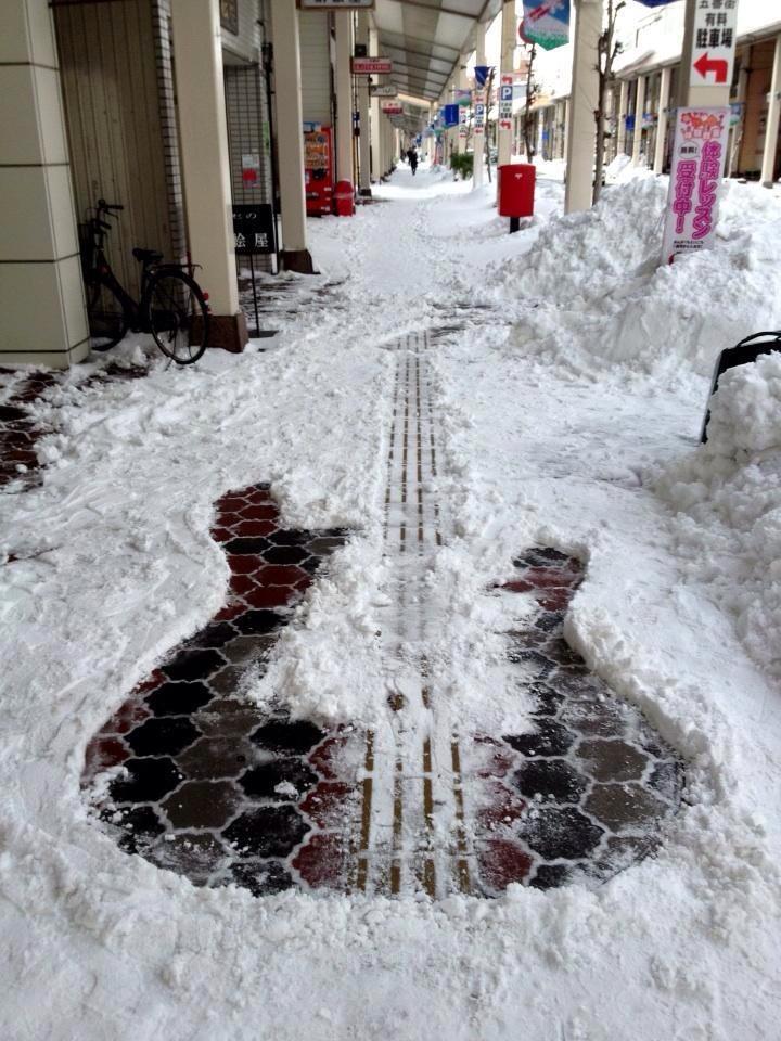 Snow-Bass