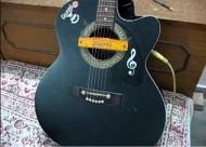 The Funkiest DIY Acoustic Pickup Ever !