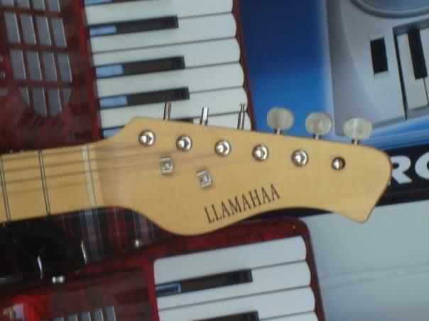 Llamahaa-Guitar