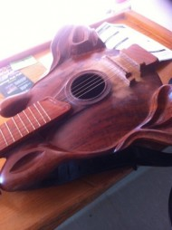 $3000 Guitar Made from an Australian Grass Tree