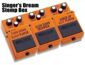 Singer's Dream Stompbox