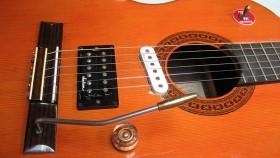 DIY Acoustic Electric Guitar