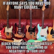 If Anyone Says You Have Too Many Guitars…